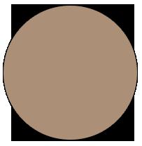 Beaver Brown